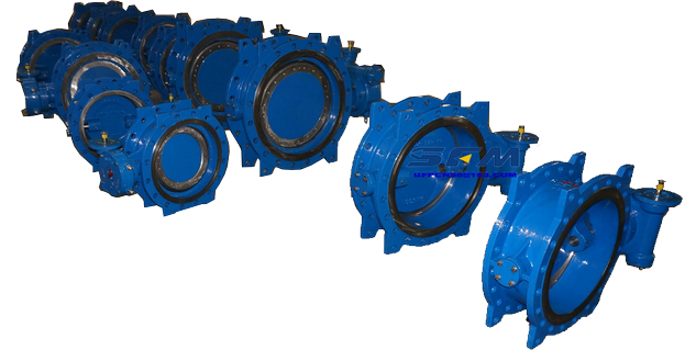 BS standard butterfly valves S13  S14