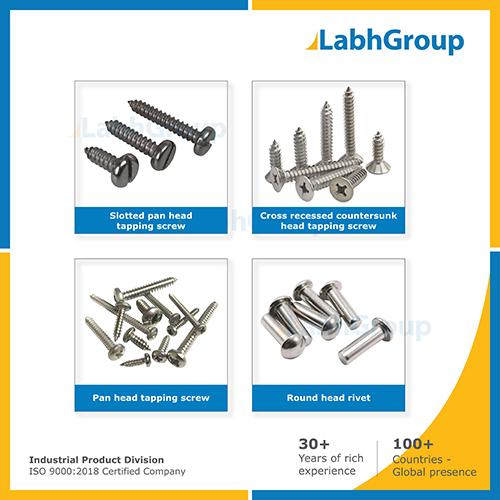 Stainless Steel Screw & Rivet