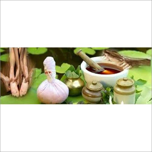 Fresh Herb Medicine