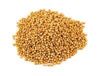 Mustard Seeds/Rapeseed