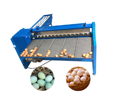 Multifunctional Egg Processing Equipment Egg Grading Machine Commercial Egg Sorter Classifier Machine
