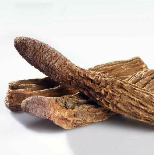 Songaria Cynomorium Herb / Suo Yang Seoyang Sayo