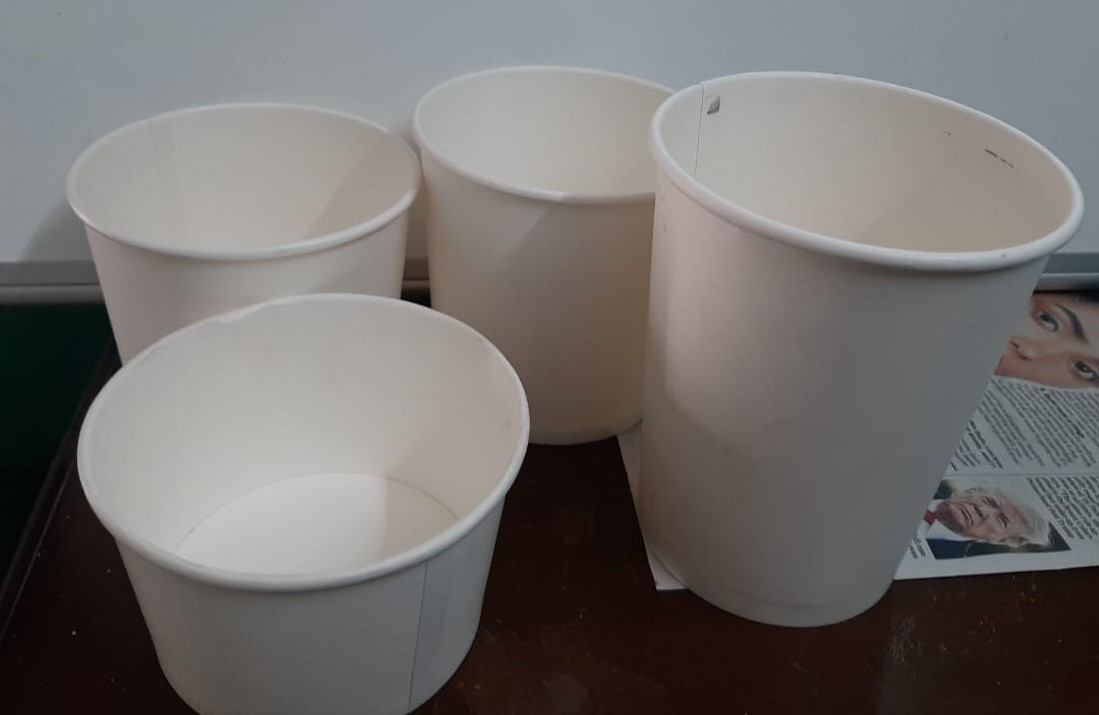 paper food containers