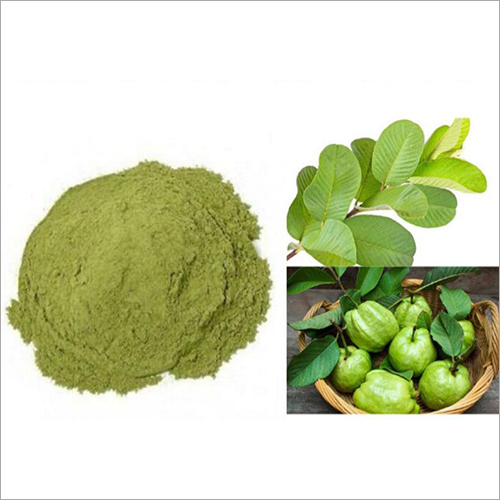 Guava Leaves Powder