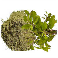 Tulsi Leaves Powder