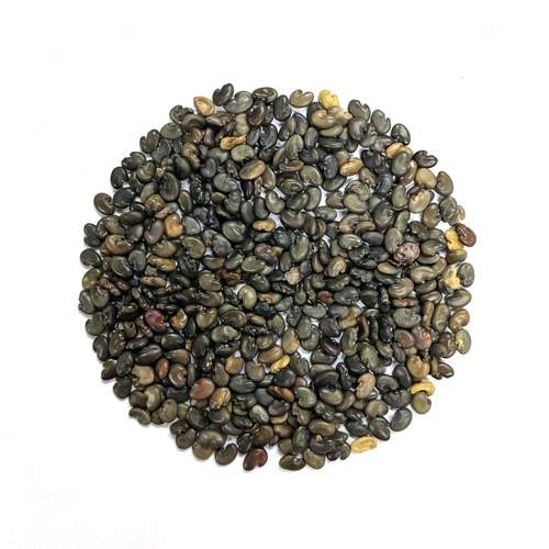 Sunhemp Seeds
