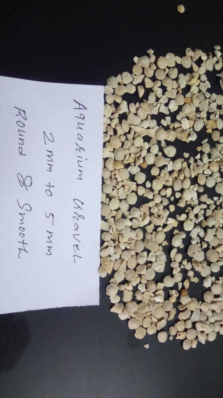 brand introduce Aquarium flat Round Smooth Gravels and chips