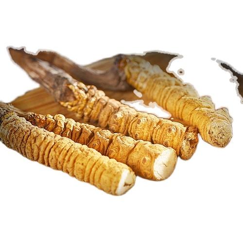 Dong Chong Xia Cao Dong Chong Xia Cao Yellow Organic Dried Cordyceps Militaris