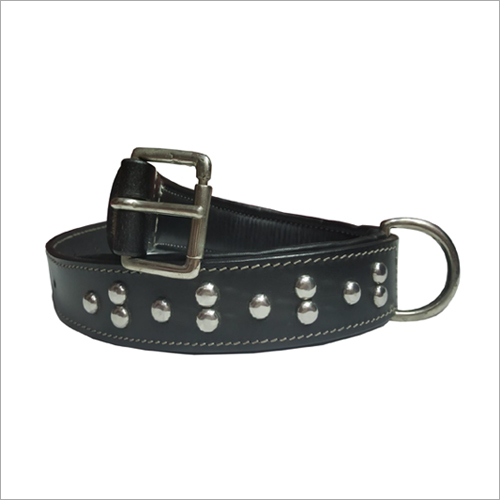 Dog Fancy Leather Collar