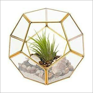 Octa Ball Shape Terrarium