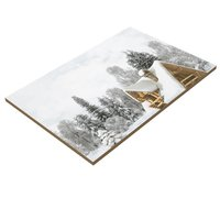 300x450MM Digital printing glossy finish wall tiles