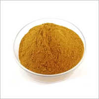 100 Percent Natural Herbal Extraction - Eucalyptus Leaf Plant Extract Powder