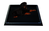 DOG Non Slip Floor Mats
