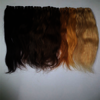 Stunning Colored Indian Human Hair Extensions