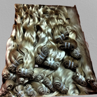 Top Grade Blonde Human Hair Extensions
