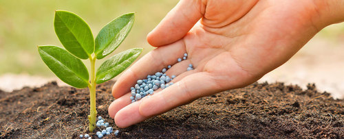 fertilizer manufacturer