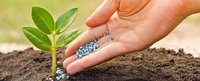 fertilizer manufacturer