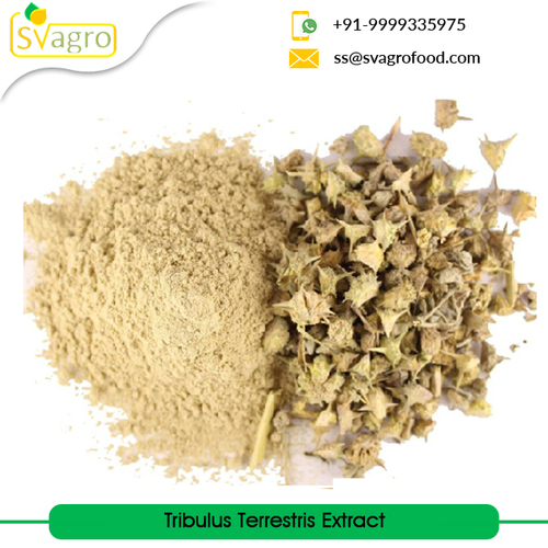 Natural Herbal Extract