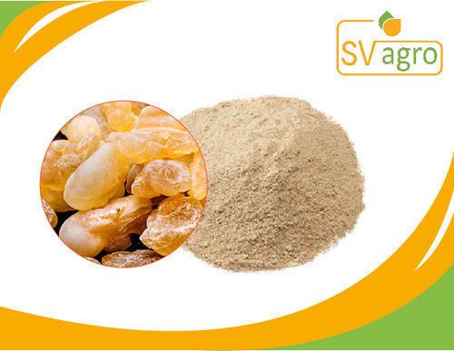 Boswellia Extract Powder 50%