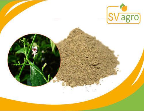 Andographis Paniculata Dry Extract
