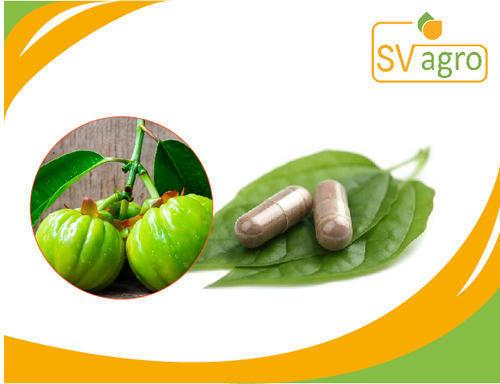 Garcinia Cambogia Weight Loss Capsule Pills