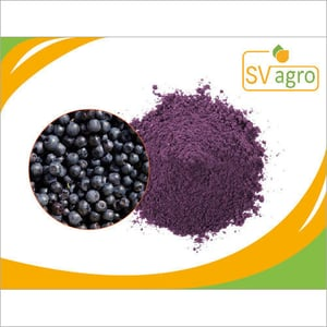 Blue Berry Extract Powder 25%