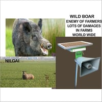 Pig Repellent Systems
