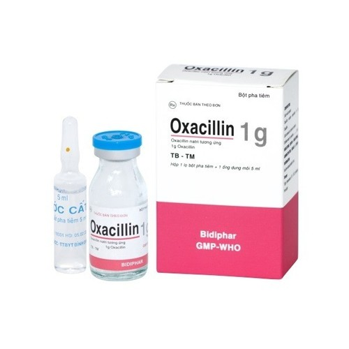 Oxacillin Injection