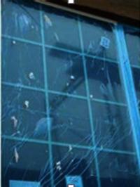 Window Protective Film