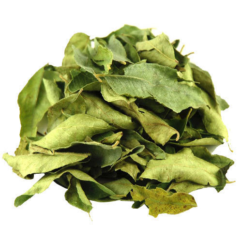 Curry Leaves And Curry Leaves Powder
