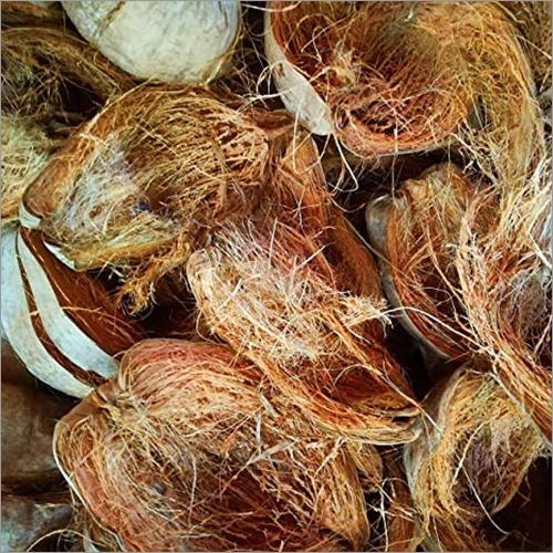 Fresh Coconut Husk