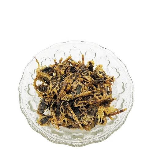 Natural Herb Quan Xie Zi Dried Scorpion