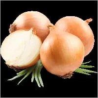 Light Red Onion