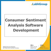 Consumer Sentiment Analysis Software Development