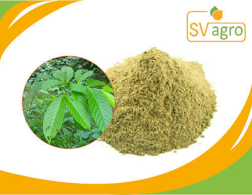Natural Banaba Extract 1%