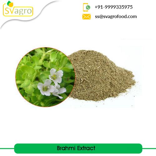 Bacopa Monnieri Extract Powder