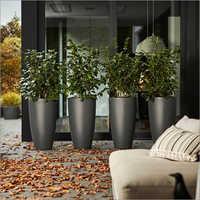 Designer Planters And Pots