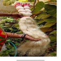 Natural Virgin Blond Human Hair