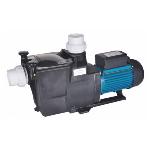 SPA Water Pump
