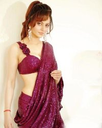 Exclusive Sequence Work Saree