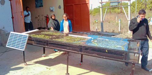 Solar Dryer For Grapes
