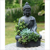 Budha Statues