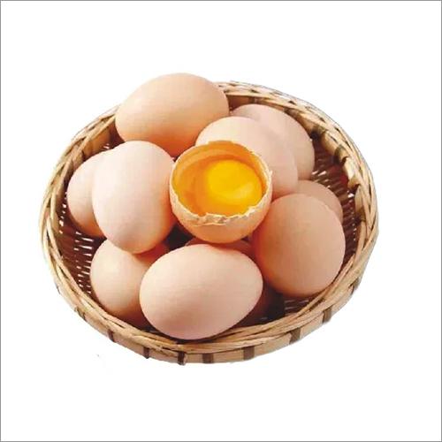 Fresh Kadaknath Egg