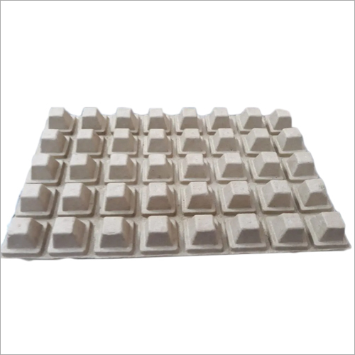 Bubble Tray Pack