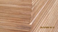 12 mm Commercial Plywood