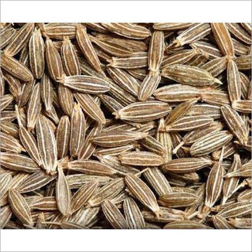 Raw Cumin Seed