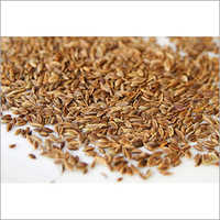 Natural Dill Seed