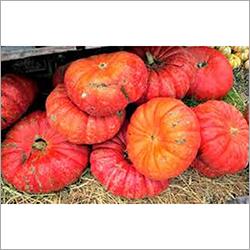 Red Pumpkins