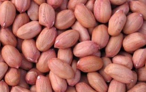 Peanut Peanut