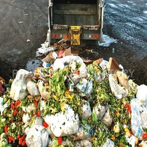 Agro Waste Testing Services